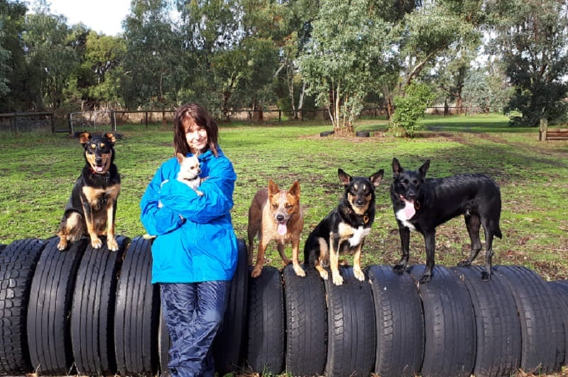 Rhonda and her dogs in Margret River